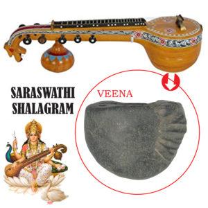 a5039-saraswathi-shaligram-shila