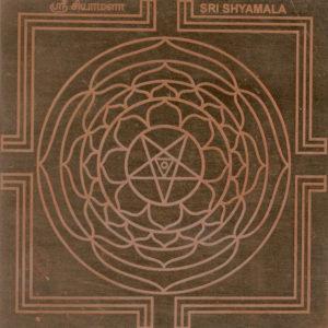 a2621-sri-shyamala-yantra