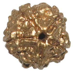 a4551-gold-painted-natural-panchamukhi-rudraksha-swarna-varna-5-mukhi-nepali-rudraksham-five-faced-rudraksha-100-original
