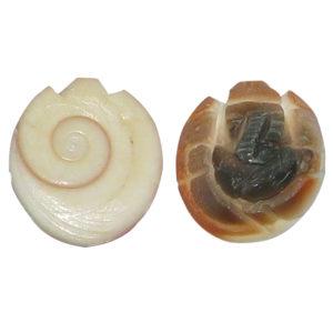 a4614-ganesha-carved-on-natural-gomti-chakra-shri-chakra